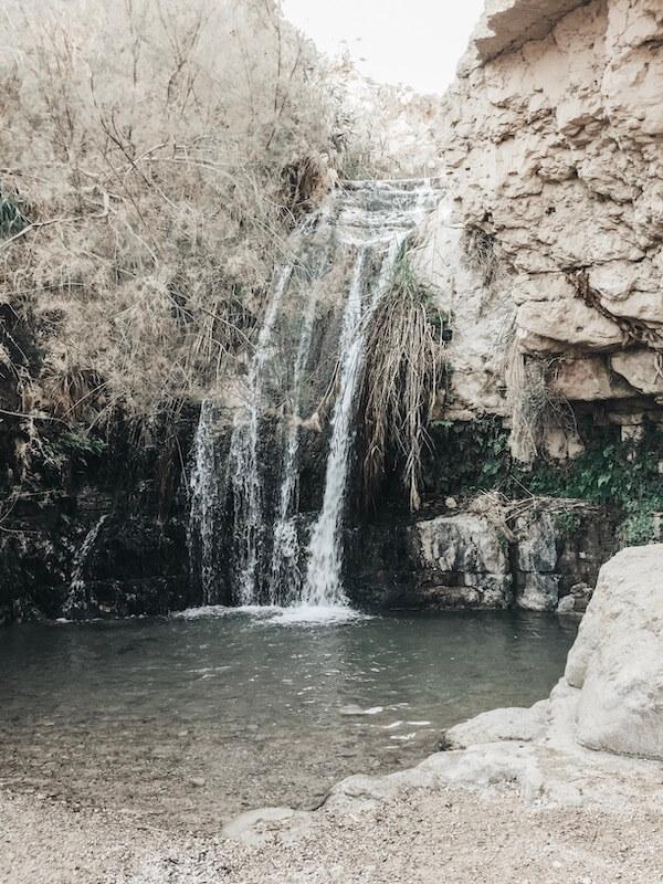 Ein Gedi Naturreservat Israel