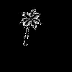 Under Palmtrees Logo